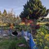 beond organic Nirvana river retreat