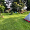 🏕️Fun on the Farm, Tent Camp Site #6