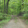 McAfees Knob 9acres Hiking Campsite