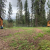 Bear Camp and Cabins Bragg Creek