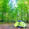 Primitive Campsite on Zoar Valley