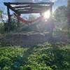 Hilltop Hangout - Tents & Hammocks