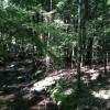 Pine Valley Pass