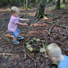 Deer Forest Hideaway