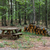 Cold Sulphur Springs Campground