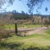 Overgrow Farm, a small farm.