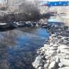 Purgatoire Riverbottom