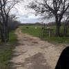 L7 Cattle Ranch