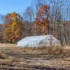 Strawberry Fields Farm- Campsite 2