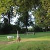 Jackson's Hill - Tent Site
