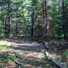 Wooden Campsite Near Longs Peak