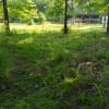 Rendezvous Farm Campout Site 4