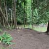 Cedars on the Hill