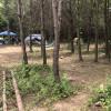 Peaceful 85 acres