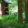 Little Mill Creek Campsite