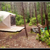 Forest Tent Yurt
