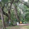 Moss Bluff Ocala National Forest