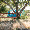 Walnut Grove on Organic Veggie Farm
