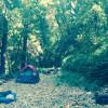 Camp Creek-side Among Soaring Trees