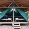 Platform Tent in the Woods