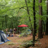 Group Camp Tent Site
