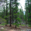 Longs Peak Staging Campsite