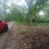 Hidden Leaf Campsite