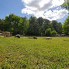 WelcomeHomestead Farm Rv camping