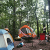 Farmstead Forest Tent Campsite (2)