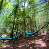 Peaceful Hanging