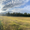 Green Acres Ranch Meadow