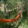 Aspen Grove Hammocks