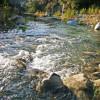 Gold River Paradise