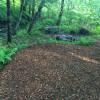 Catskills creekside tent camping