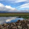Wind River Views 1