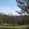 24 Back Meadow