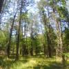 Aufderklamm Farm Entire Campground