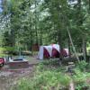 Iron Horse Forest Cedar Grove Camp