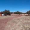 Starborne Ranch Camp