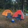Camp Grasshopper
