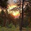 Straus Mountain Campsite