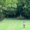 Pecan Grove Retreat - RV