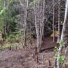 Garden + Forest WildCommons Village
