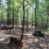 OC Single Tent Sites