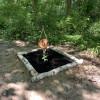 Woodsy spot #5