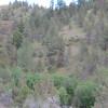 Pa's Camp, Creekside