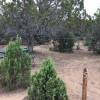 High desert camping #5