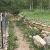 Aspen Grove Camp Site #4