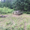Feral Picnic Table