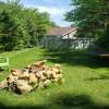 Tent Site- Stone Fire Pit & Hammock